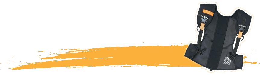 Lestage - Atlantys Homopalmus