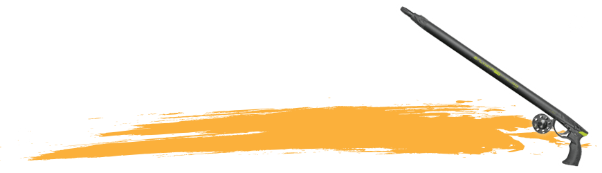 Arbalètes • fusils - Atlantys Homopalmus