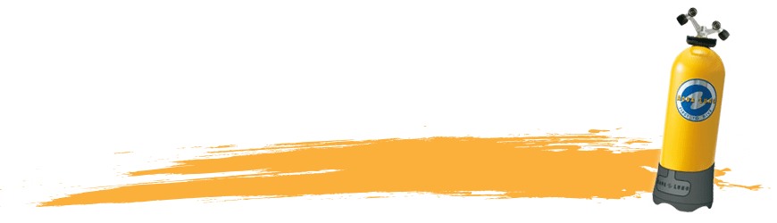 Bouteille de plongée sous-marine