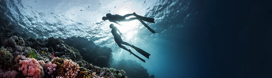 Triathlon • Apnée • Snorkeling - Atlantys Homopalmus