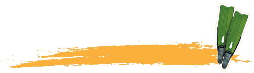 Palmes d'apnée & de snorkeling