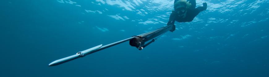 Accastillage/flèches - tous les accessoires de chasse sous marine